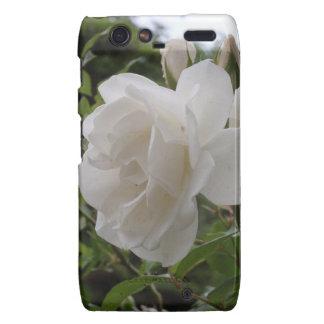 Single White Rose Motorola Droid RAZR Case