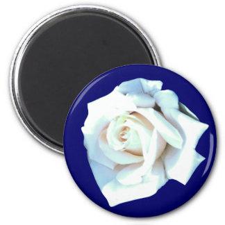 Single White Rose Magnet