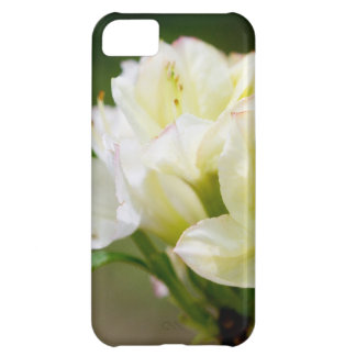 Single white wild flower iPhone 5C cases