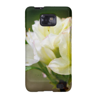 Single white wild flower galaxy SII covers