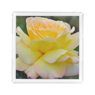 Single yellow rose acrylic tray