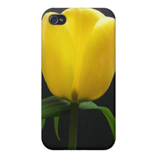 Single yellow tulip flower cases for iPhone 4