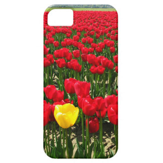 Single yellow tulip in a field of red tulips case for the iPhone 5