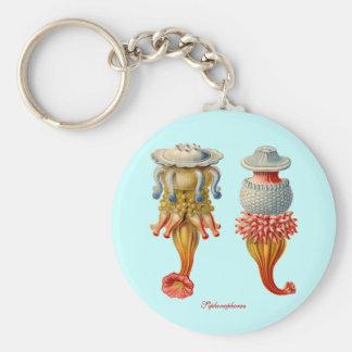 Siphonophorae  - Jellyfish key fob Keychain