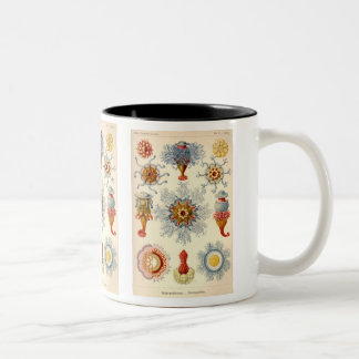 """Siphonophorae"" Vintage Illustration Two-Tone Coffee Mug"