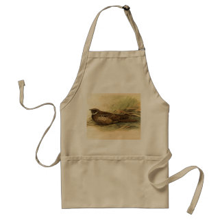 Siphonorhis Americana Apron