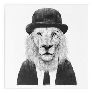 Sir lion acrylic print