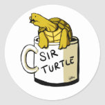 Sir turtle stickers