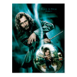 Sirius Black and Bellatrix Lestrange Postcard