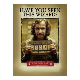 image regarding Harry Potter Wanted Poster Printable called Harry Potter Ideal Posters Prints Zazzle United kingdom