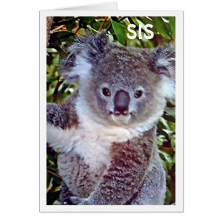 "SIS THIS ""KOALA BIRTHDAY CARD IS JUST FOR ""YOU!"""