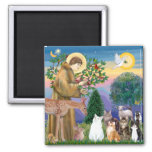 Sister Frances Blessing 5 cats Refrigerator Magnet