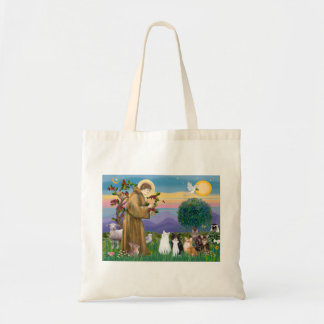 Sister Frances Blessing 5 cats Budget Tote Bag