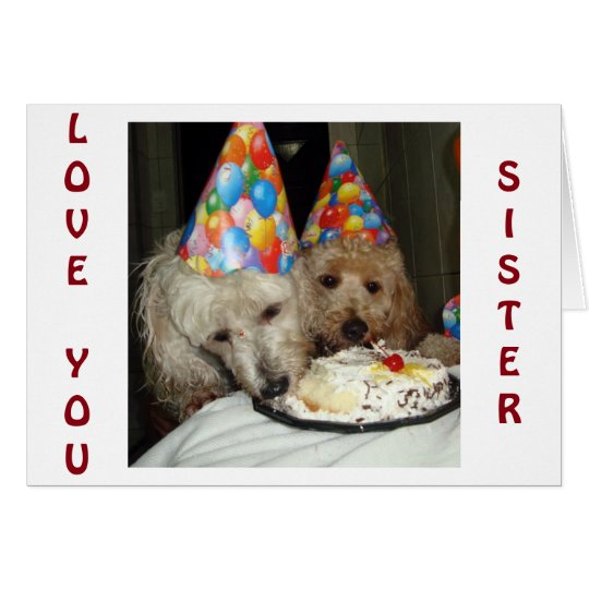SISTER'S BIRTHDAY-REMEMBER ALL WE HAVE SHARED! CARD