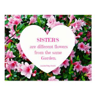 Sisters! Postcard