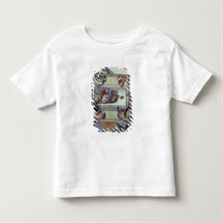 Sistine Chapel Ceiling 2 Toddler T-Shirt