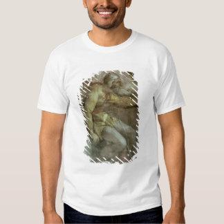 Sistine Chapel Ceiling T-shirts