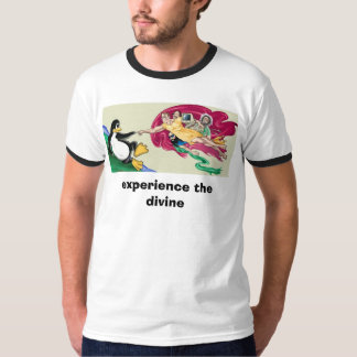 sistine, experience the divine tee shirts