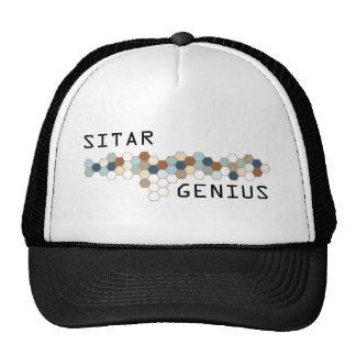 Sitar Genius Hat