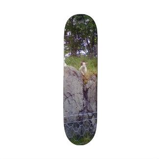 Siting and standing sheep custom skate board