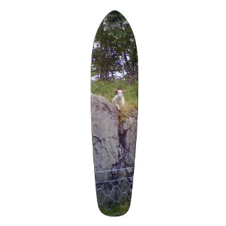 Siting and standing sheep 21.6 cm skateboard deck