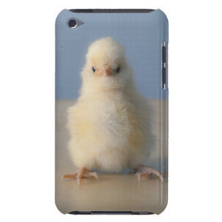 Sitting Baby Yellow Chicken, 3 days old iPod Case-Mate Case