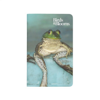 Sitting Frogs Journal