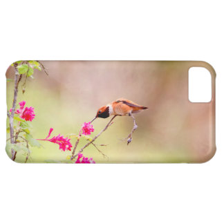 Sitting Hummingbird Sipping Flower Nectar iPhone 5C Cover