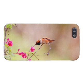 Sitting Hummingbird Sipping Flower Nectar iPhone 5/5S Cases