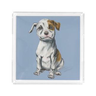 Sitting Pit Bull Puppy Drawing Acrylic Tray