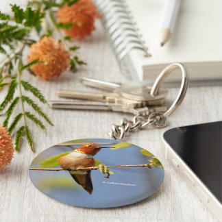 Sitting Pretty: Male Rufous Hummingbird Basic Round Button Key Ring
