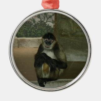 Sitting Pretty Monkey Silver-Colored Round Decoration
