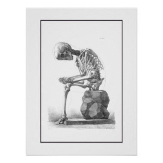 Sitting vintage skeleton thinking print