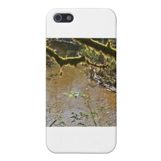 Siuslaw River iPhone 5 Case