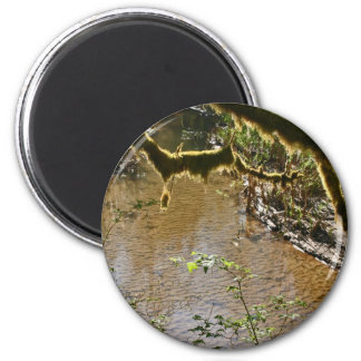 Siuslaw River Refrigerator Magnets
