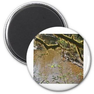 Siuslaw River Fridge Magnets