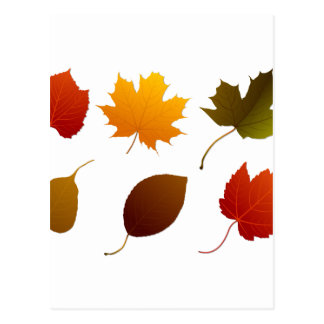 six fall colour leaves nature image graphic.png postcard