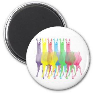 six lamas in six llama colors 6 cm round magnet