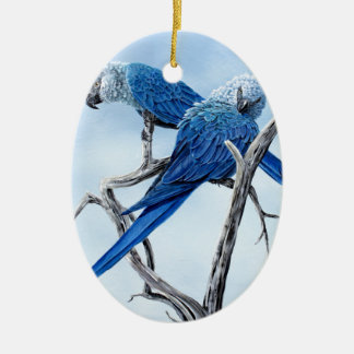 Six Macaw gifts for the Parrot lover Ceramic Oval Decoration