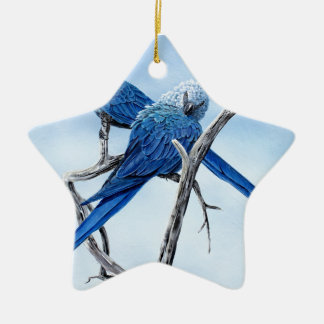 Six Macaw gifts for the Parrot lover Ceramic Star Decoration