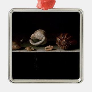 Six Shells on a Stone Shelf, 1696 Christmas Ornament