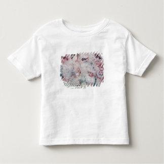 Six Studies T Shirt