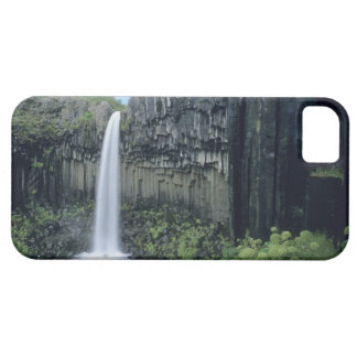 Skaftafell National Park, Svartifoss waterfall, iPhone 5 Case