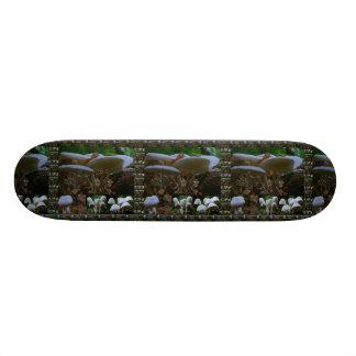 "Skate Borarding Deck Type: 7¾"" MUSHROOM Bud Skate Board Deck"