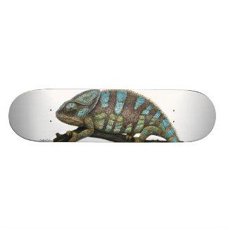 Skate chameleon skate deck