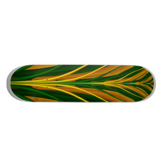 Skateboard Abstract Tree - Signed DocRoy 2011