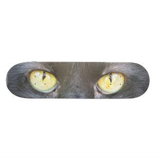 Skateboard Collection - Black Cat Skateboard
