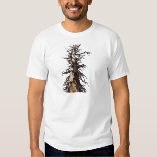 Skeletal Tree Overcast T-shirt