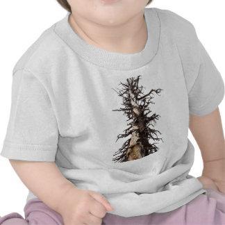 Skeletal Tree Overcast Shirt
