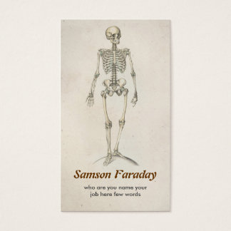 skeleton anatomy  business card
